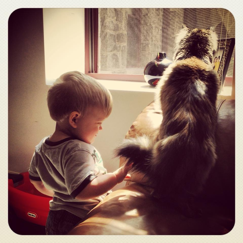 A Boy and His Cat (4/6)