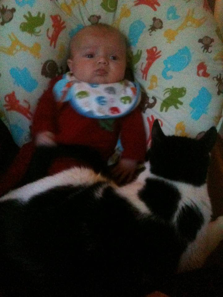 A Boy and His Cat (1/6)